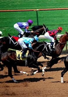 horse_racing1