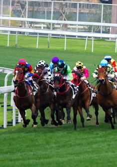 horse_racing2